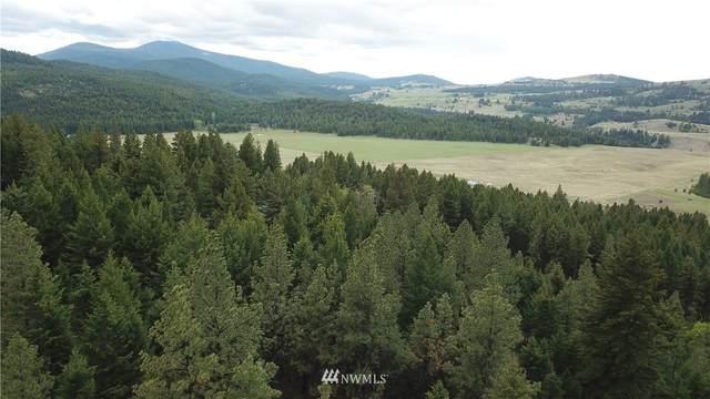 88 Pine Chee Road, Oroville, WA 98844 (#1780708) :: Keller Williams Western Realty