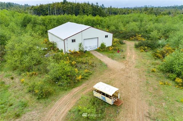 2850 State Route 109, Copalis Beach, WA 98569 (#1780812) :: Better Properties Real Estate