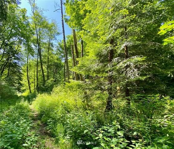 0 Swordfern Lane, Camano Island, WA 98282 (#1781038) :: Northwest Home Team Realty, LLC