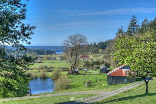 2831 Crow Valley Road, Orcas Island, WA 98245 (#1781190) :: The Snow Group