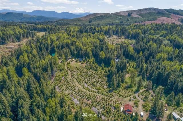 9 Deer Lane, Cougar, WA 98616 (#1781802) :: Keller Williams Western Realty
