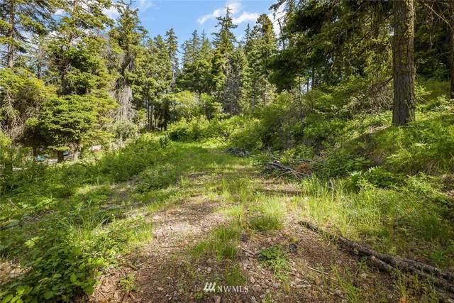 0 Horse Heaven Road, Cle Elum, WA 98922 (#1782322) :: Northwest Home Team Realty, LLC