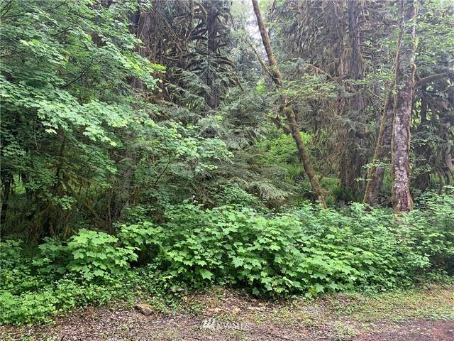 0 Cascade Park Place, Marblemount, WA 98267 (#1782377) :: NW Homeseekers