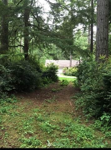 11709 Lake Pl, Anderson Island, WA 98303 (#1782480) :: Keller Williams Western Realty