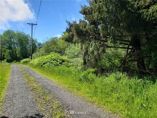 0 S Pleasant Drive, Westport, WA 98595 (#1782588) :: Northern Key Team