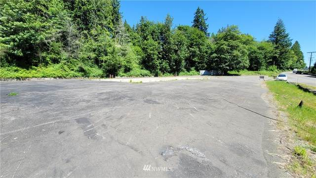 1111 Hwy 3, Shelton, WA 98584 (#1782835) :: Commencement Bay Brokers