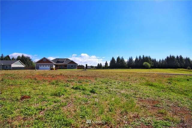 21 Grace Lane, Montesano, WA 98563 (#1782847) :: Better Properties Lacey