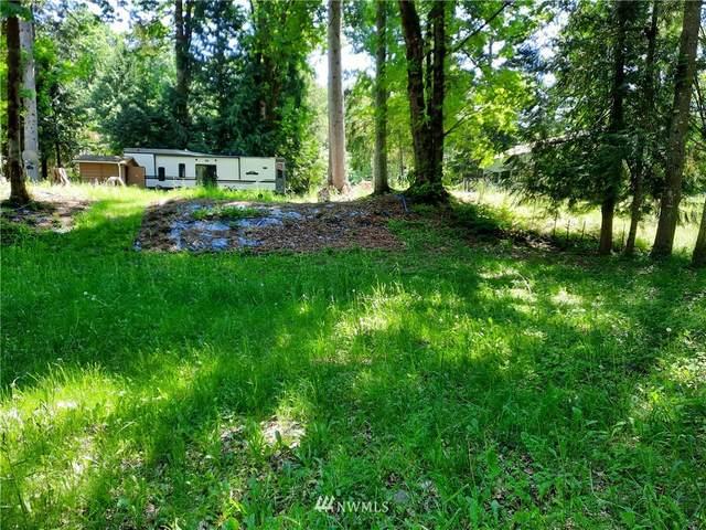 41533 North Shore Lane, Concrete, WA 98237 (#1782993) :: Keller Williams Realty