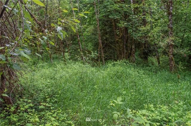 252 Alpenridge Road, Kelso, WA 98626 (#1783173) :: Keller Williams Western Realty