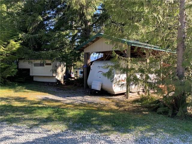 44973 Kachess Trail, Concrete, WA 98237 (#1783219) :: Tribeca NW Real Estate