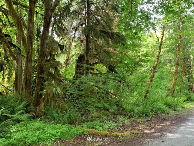 0 W Cascade Way, Marblemount, WA 98267 (#1783239) :: NW Homeseekers