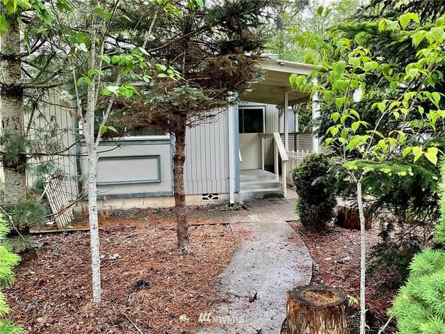 685 Morse Street, Ryderwood, WA 98581 (#1783344) :: Beach & Blvd Real Estate Group