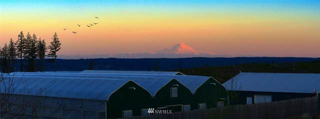 Quilcene, WA 98376 :: Icon Real Estate Group