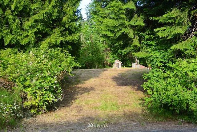 3597 Nokomis Road SE, Port Orchard, WA 98366 (#1783805) :: Keller Williams Western Realty