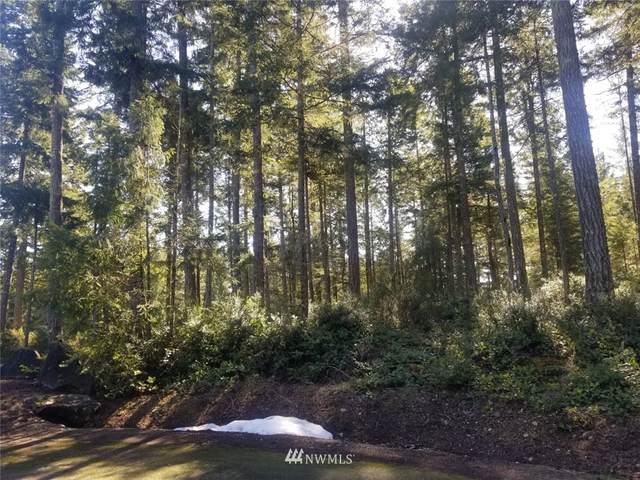 380 E Laurel Park, Union, WA 98592 (#1783894) :: Keller Williams Western Realty