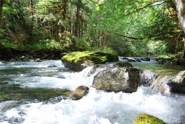 0 Money Creek Road, Skykomish, WA 98288 (#1784095) :: NW Homeseekers