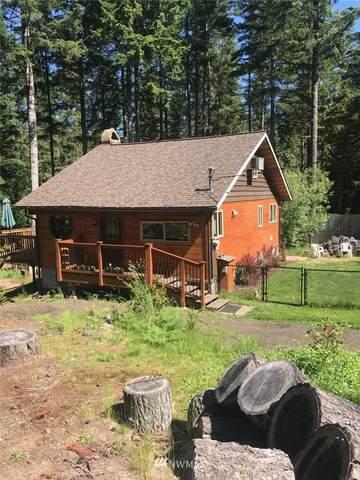 730 NE Collins Lake Drive, Tahuya, WA 98588 (#1784098) :: Keller Williams Western Realty