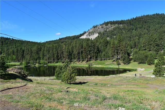 25 Deer Lake Road, Republic, WA 99166 (#1784512) :: Keller Williams Western Realty
