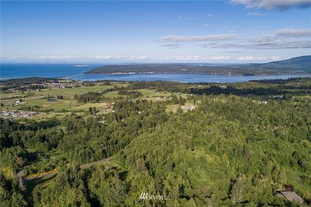 9999 Elk Pass Road, Sequim, WA 98382 (#1784926) :: Better Homes and Gardens Real Estate McKenzie Group