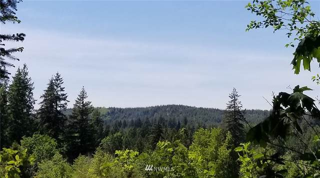 28 Maple Hill Lane, Elma, WA 98541 (#1784941) :: Keller Williams Western Realty