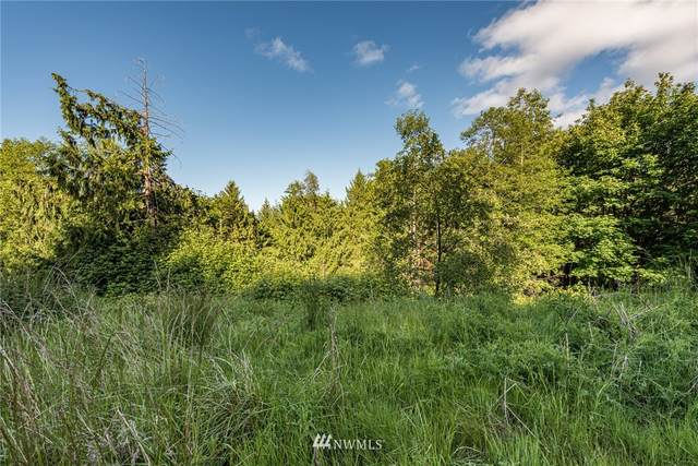 9999 Elk Pass Road, Sequim, WA 98382 (#1784990) :: Better Homes and Gardens Real Estate McKenzie Group