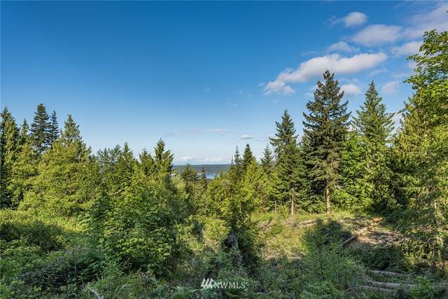 9999 High View Lot Way, Sequim, WA 98382 (#1785152) :: Better Homes and Gardens Real Estate McKenzie Group