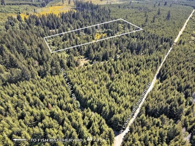 190 W Elk Hill Road, Elma, WA 98541 (#1785416) :: McAuley Homes