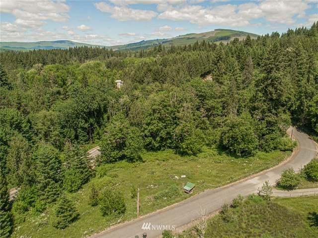 0 Rose Valley Loop, Kelso, WA 98626 (#1785508) :: Keller Williams Western Realty