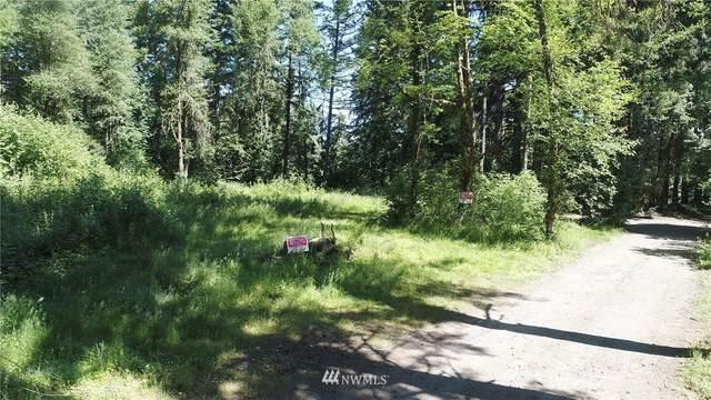 26328 NE 61st Avenue, Battle Ground, WA 98604 (#1786496) :: Northwest Home Team Realty, LLC