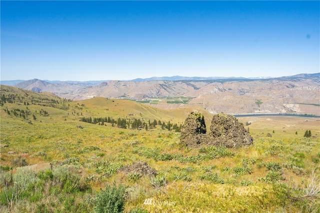 0 Long Draw Road, Orondo, WA 98843 (#1786652) :: Keller Williams Western Realty