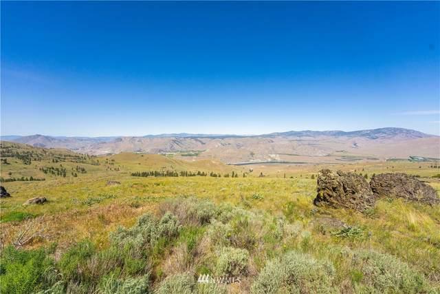 0 Long Draw Road, Orondo, WA 98843 (#1786654) :: Keller Williams Western Realty