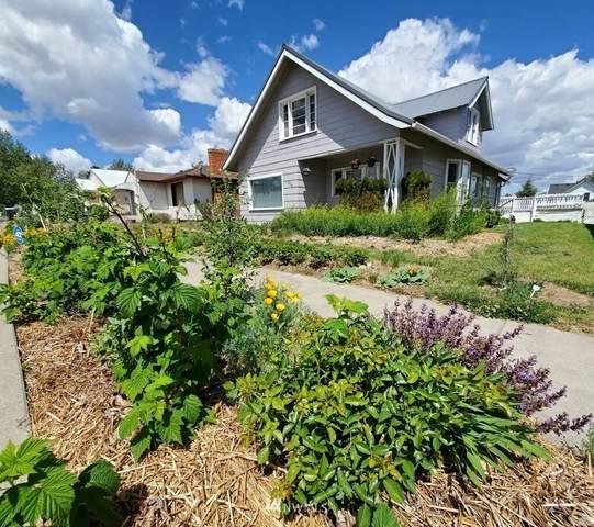409 E 2nd Avenue, Odessa, WA 99159 (#1786836) :: Better Properties Lacey