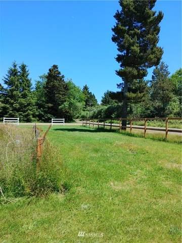 29005 S Lane, Ocean Park, WA 98640 (#1786855) :: Simmi Real Estate