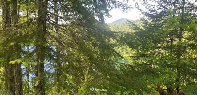0 N Mountain View Drive, Hoodsport, WA 98548 (#1787020) :: Becky Barrick & Associates, Keller Williams Realty