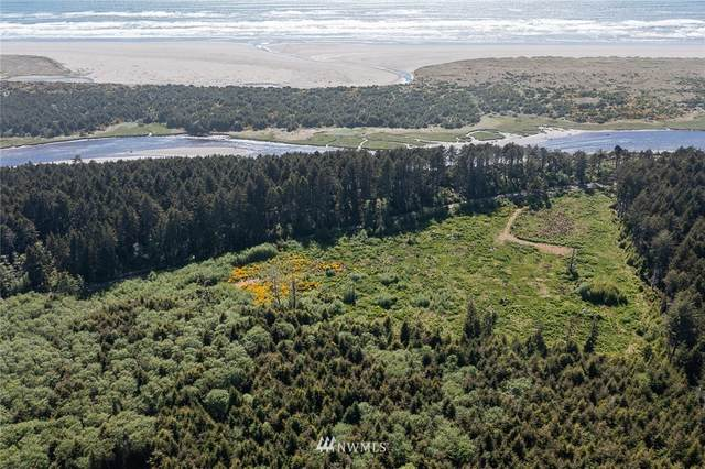 3290 State Route 109, Copalis Beach, WA 98535 (#1787036) :: Better Properties Real Estate