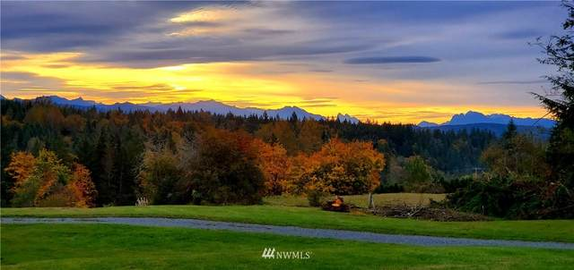 20 Newberg Road, Snohomish, WA 98290 (#1787350) :: Keller Williams Western Realty
