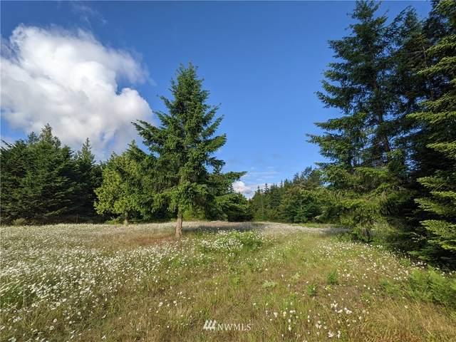 9999 Osprey Glen Road, Sequim, WA 98382 (#1789192) :: NW Homeseekers