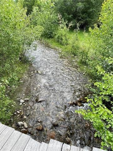 0 Tunk Creek Road, Riverside, WA 98849 (#1789269) :: Engel & Völkers Federal Way