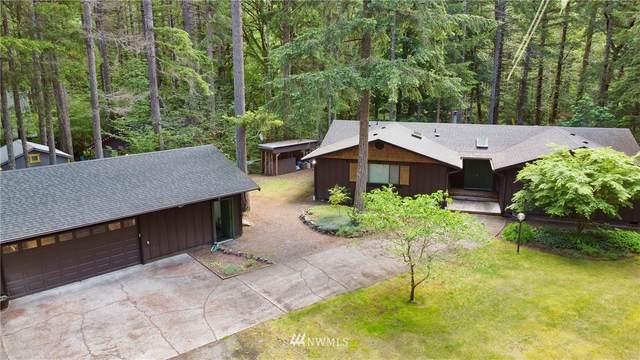 651 Dow Creek Drive, Hoodsport, WA 98548 (#1789622) :: Becky Barrick & Associates, Keller Williams Realty