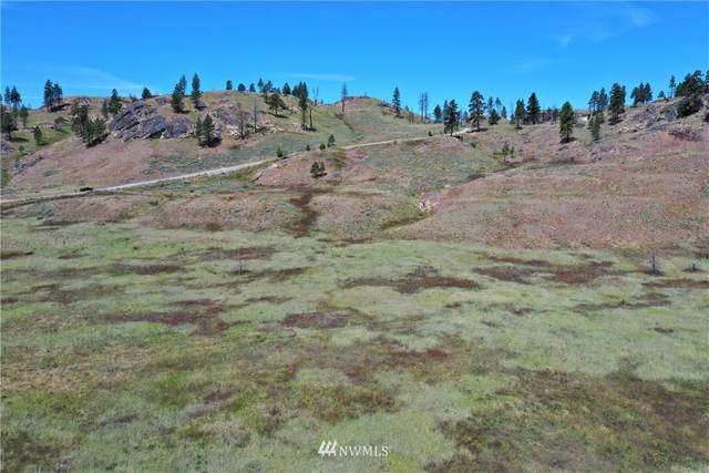 18 Crest Drive, Oroville, WA 98844 (MLS #1790020) :: Community Real Estate Group