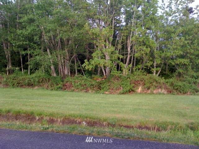 0 Lot 80 Chilliwack Road, Blaine, WA 98230 (#1790136) :: Becky Barrick & Associates, Keller Williams Realty