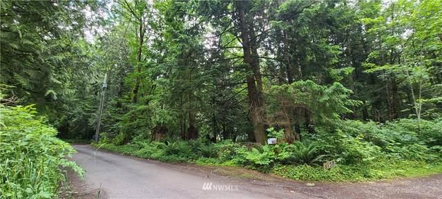 81 Watkins, Sumas, WA 98295 (#1790681) :: M4 Real Estate Group