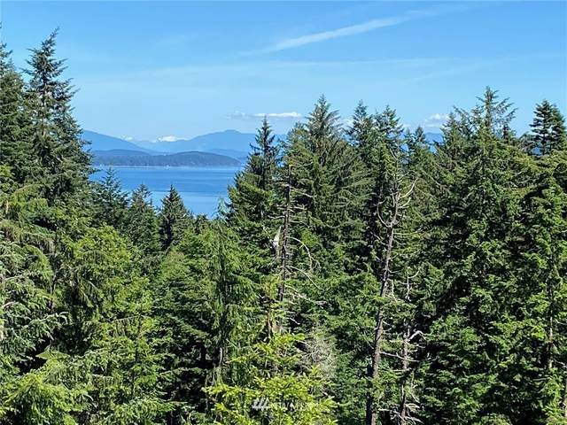 65 Roehl's Hill Rd., Orcas Island, WA 98245 (#1790906) :: The Kendra Todd Group at Keller Williams