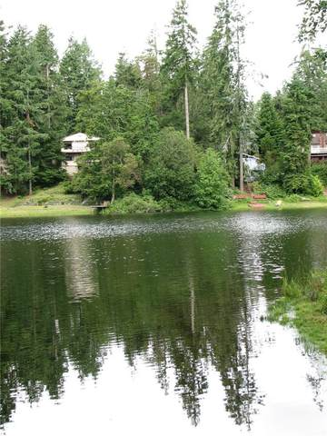 14904 113th Street NW, Gig Harbor, WA 98329 (#1790910) :: Better Homes and Gardens Real Estate McKenzie Group