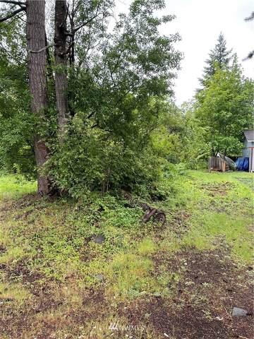 17517 E Clear Lake Boulevard SE, Yelm, WA 98597 (#1791143) :: Becky Barrick & Associates, Keller Williams Realty