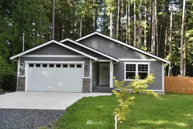1241 Hopeful Valley Lane, Maple Falls, WA 98266 (#1791339) :: Canterwood Real Estate Team