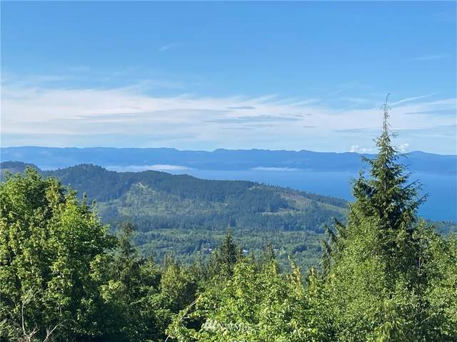 999 Eagle Heights Road, Port Angeles, WA 98363 (#1791582) :: Better Homes and Gardens Real Estate McKenzie Group