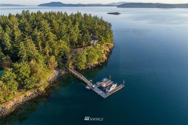 45 Pearl Island, Friday Harbor, WA 98250 (#1791725) :: Ben Kinney Real Estate Team