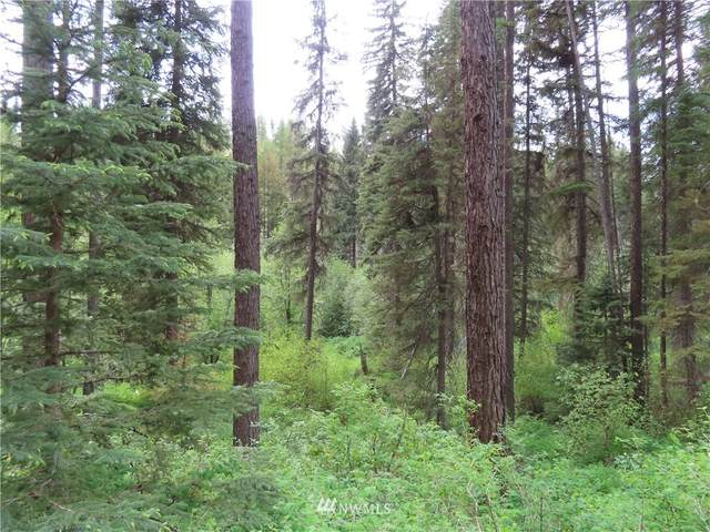 0 Granite Creek Road, Republic, WA 99166 (#1792267) :: Keller Williams Western Realty