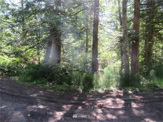 4600 Husky Drive, Bellingham, WA 98226 (#1792385) :: Shook Home Group